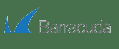 logo de barracuda fabricante de consultoria it partner