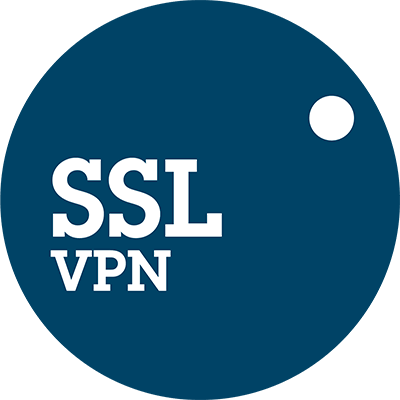ssl vpn logo